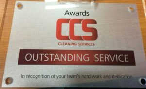 outstanding service award