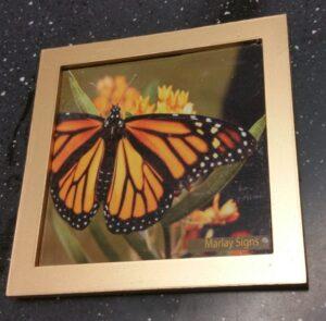 Butterfly design brass plaque